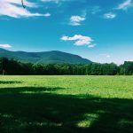 Hudson Valley Pristine