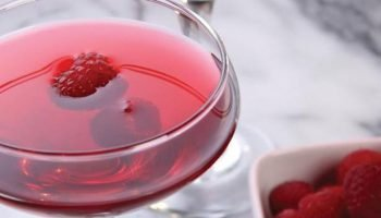 Easy Cranberry Vodka Christmas Punch Recipe